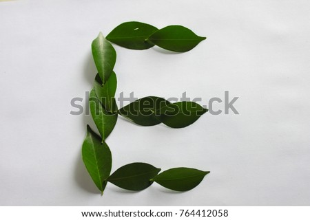 Make leaf to english E alphabet with white background - Shutterstock ID 764412058