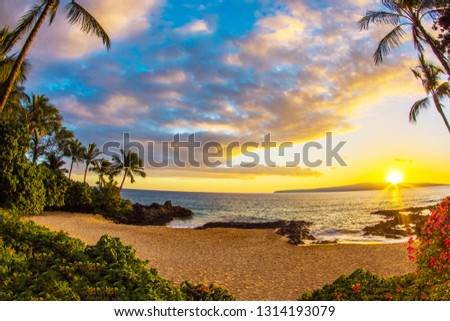 Makena Cove or Secret Beach is a small and exuberant spot on Maui, Hawaii. This beach is a favorite destination for beach weddings with its white sand, palm trees, waves and dramatic black lava rock.