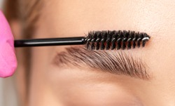 Makeup artist combs eyebrows with a brush after dyeing in a beauty salon. Professional makeup and cosmetology skin care.