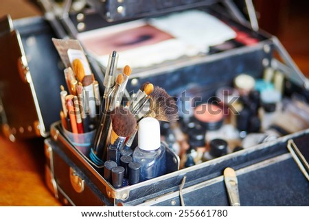 Makeup brushes in a makeup artist case