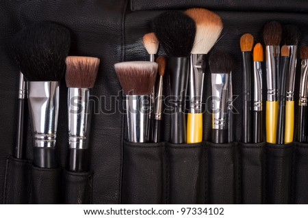 Makeup brushes in leather case