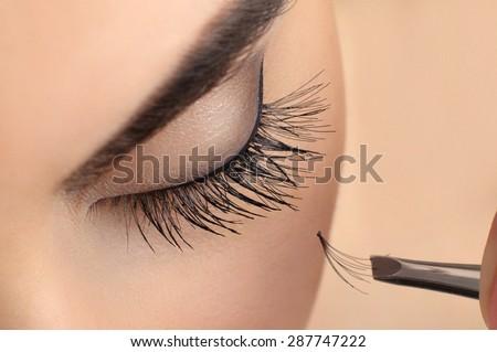 Makeup close-up. Eyebrow makeup. Eyelash extension.