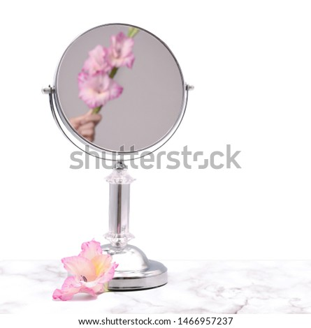 Makeup vanity mirror reflects woman's hand. A hand holding a pink flower in a mirror. White background and copy space.