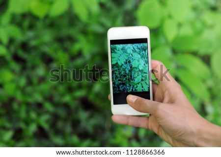 making a photo of green leaves with smartphone #1128866366