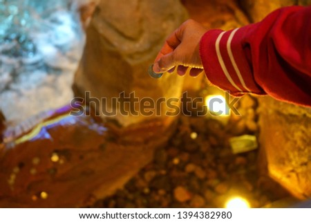 Making a wish by dropping a coin into a wishing well.