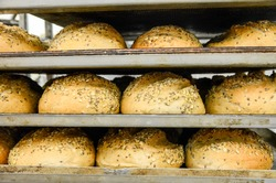 Making bread in bakery. Many hot just baked bread on a rack. Racks of cooked pastry on a baking tray. Food industry. Shelves with delicious freshly baked bread, close up.