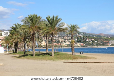 Malaga in Andalusia region of Spain. Palm trees and sandy beach.