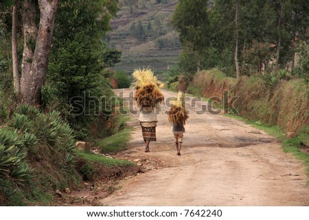 Malagsy people carrying loads of straw on their heads