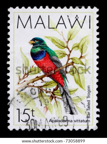 MALAWI - CIRCA 1987: A 15-tambala stamp printed in Malawi shows the bar tailed trogon, Apaloderma vittatum, circa 1987