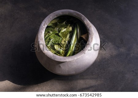 malay herbs herbs