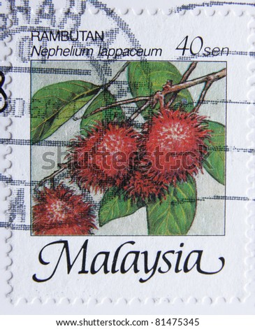 MALAYSIA-CIRCA 1986: A post stamp printed in Malaysia shows fruits rambutan, series nature, circa 1986