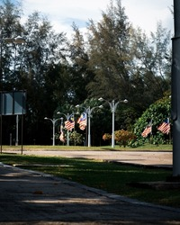 Malaysia flags known as Jalur Gemilang waving on the street due to the Independence Day celebration or Merdeka Day.