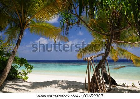 maldives paradise beach Stok fotoğraf ©