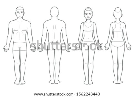 Male and female body chart, front and back view. Blank human body template for medical infographic. Isolated clip art illustration.