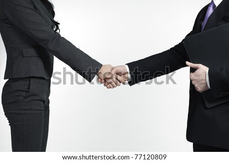male and female business people shaking hands - stock photo