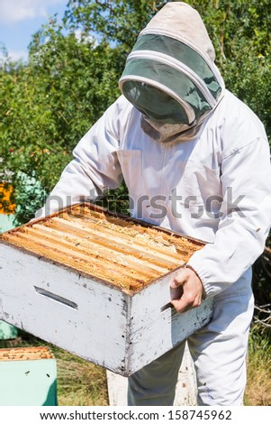 Male beekeeper in protective clothing carrying honeycomb crate at apiary
