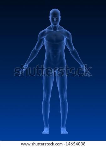 male body - stock photo
