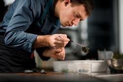 male chef accurate holding tweezers in his hand with ingredient for preparing fusion cuisine dish