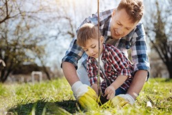 Male family members planting fruit tree
