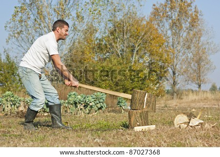 Male figure chopping or slitting winter wood against a rural Autumn backdrop
