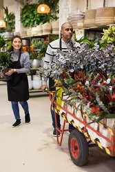 Male florist delivering pots of flowers on a pushcart