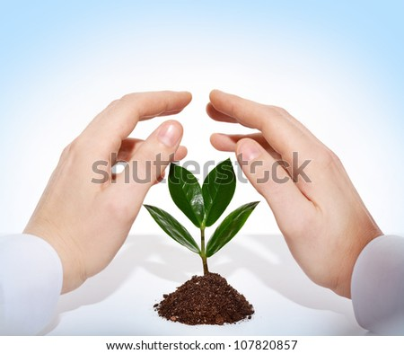 Male hands offering protection for a new sprout - stock photo