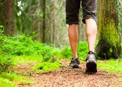Male hiking in the woods.
