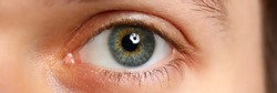 Male left green grey coloured eye extreme closeup. Oculist and perfect vision contact lens concept