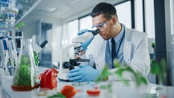 Male Microbiologist Looking at a Lab-Grown Cultured Vegan Meat Sample in a Microscope. Medical Scientist Working on Plant-Based Beef Substitute for Vegetarians in a Modern Food Science Laboratory.