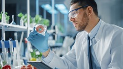 Male Microbiologist Working in Labolatory and Examining a Lab-Grown Vegan Meat Sample. Medical Scientist Working on Plant-Based Beef Substitute for Vegetarians in Modern Food Science Laboratory.