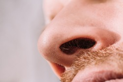 Male nose close up bottom view - hair in the nostrils