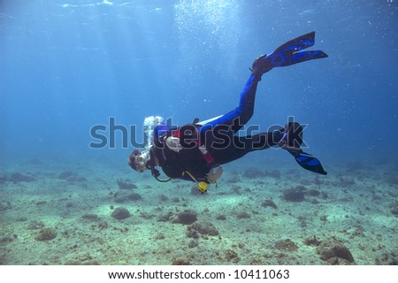 male scuba diver with blue and black fins and wetsuit swimming in blue water of caribbean sea #10411063