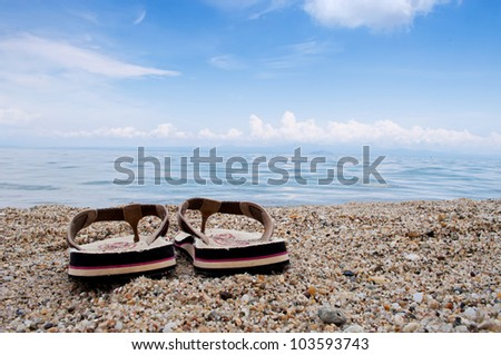 Male thongs on the sand beach with sea and sky in the background