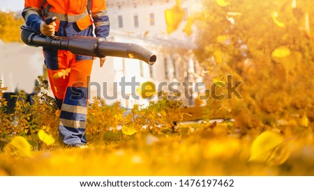 Male worker removes leaf blower lawn of garden Autumn. Stock photo ©