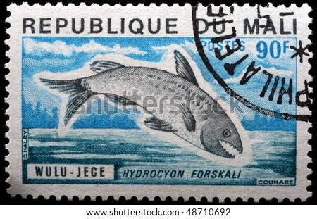 MALI - CIRCA 1980: A stamp printed in Republic of Mali shows fish Hydroyon forskali, circa 1980