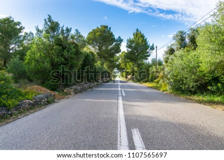 Mallorca, Endless bolt upright street through green landscape with blue sky #1107565697