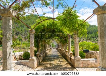 Mallorca. Water fountains alley in Alfabia Gardens, Jardines de Alfabia, Mallorca, Balearic Islands, Spain. Travel destination concept