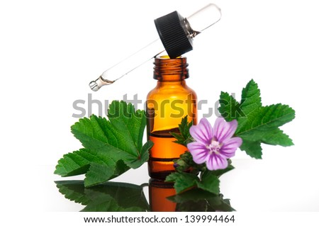Malva Sylvestris with essential oil