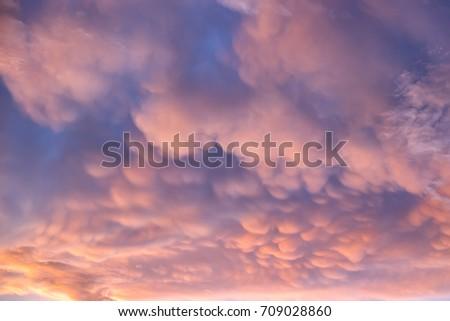 Mammatus cloud in sunset sky. A pattern of pouches thunderstiorm cumulonimbus rainclouds.