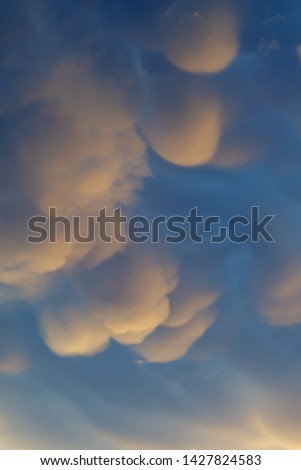 Mammatus clouds in evening sky after a passing supercell thunderstorm. Beauty in nature, weather and meteorology concepts #1427824583