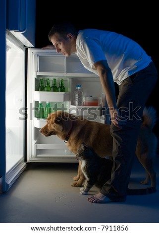 Man and his pets looking for food in the refrigerator