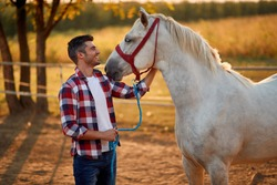 Man and horse. Man have a hobby time, riding. Horses concept