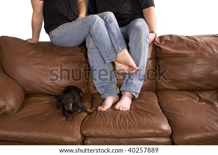 Man and woman cuddling on couch with their dog relaxing next to their legs and feet.