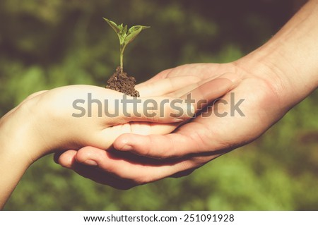 Man and woman holding young tree in hands against spring green background. Environmental protection concept