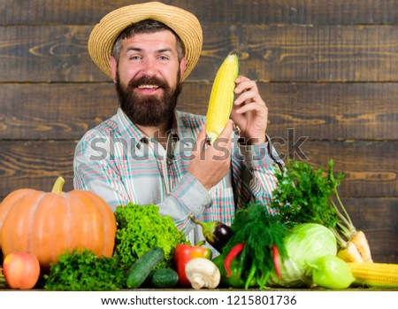 Man cheerful bearded farmer hold corncob or maize wooden background. Farmer straw hat presenting fresh vegetables. Farmer with homegrown harvest. Farmer rustic villager appearance. Grow organic crops.