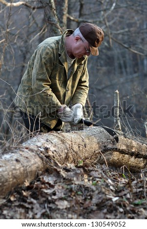 Man chopping tree in the wood