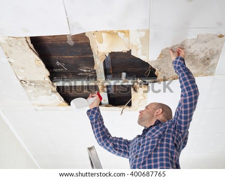 man cleaning mold on ceiling.Ceiling panels damaged  huge hole in roof from rainwater leakage.Water damaged ceiling .