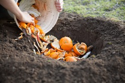 man composting vegetable and fruits peel