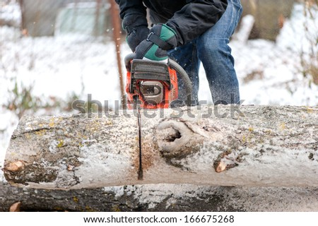 Man cutting trees and fire wood during winter in garden