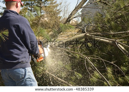 Man cutting up fallen tree with chainsaw